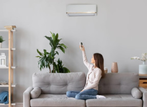 The Best Whole House Air Purifiers