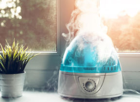 The Risks of Using a Humidifier – What You Need to Know