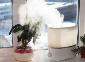 Should I Buy A Humidifier?