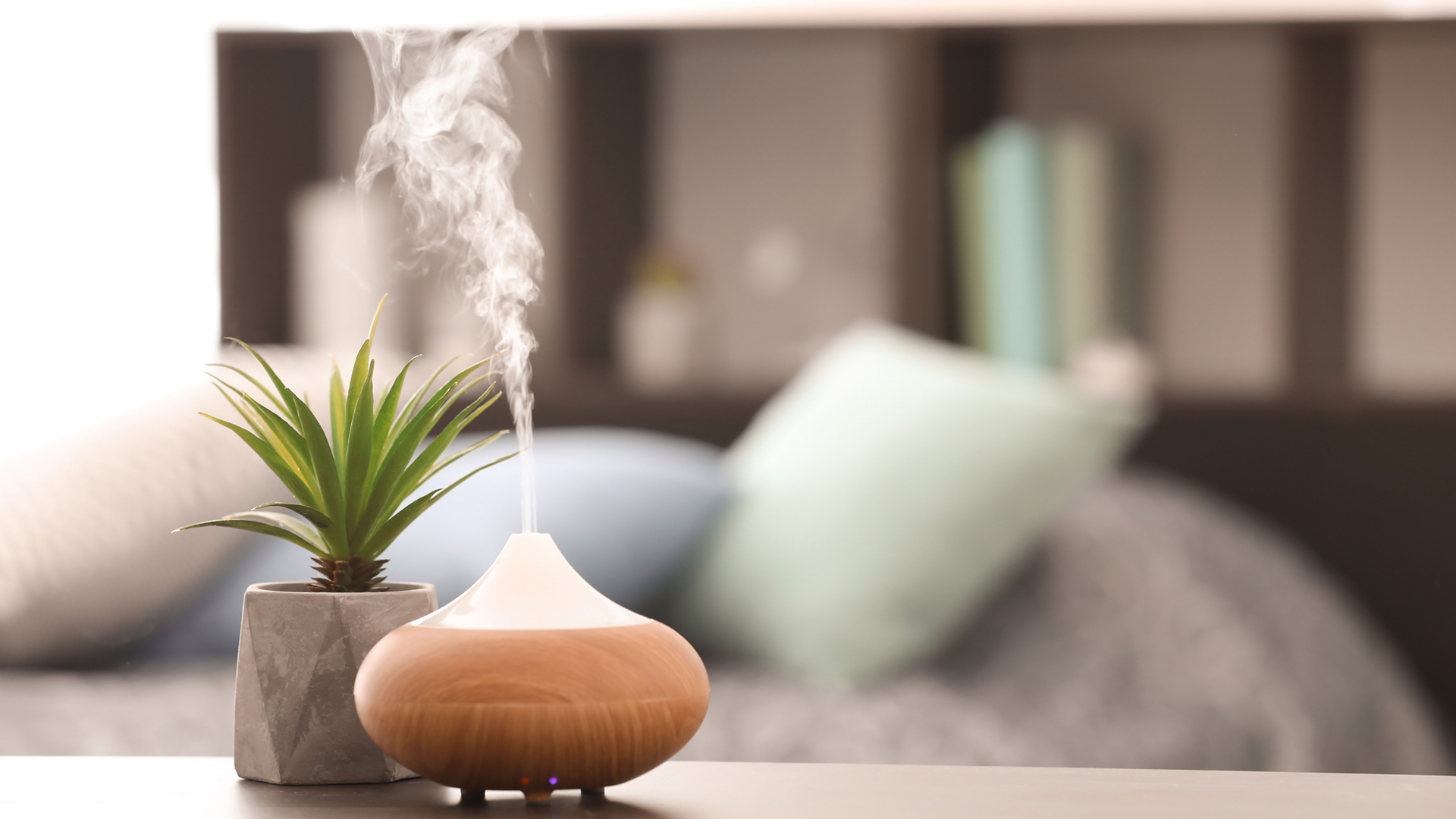 Usage Environment Things to Consider When Buying a Humidifier
