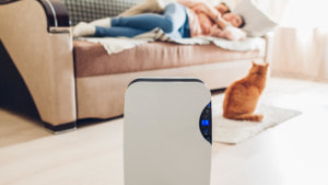 The Best Air Purifiers To Keep You & Your Family Healthy