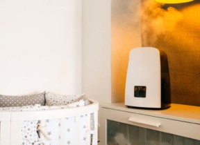 Best Air Purifier – Humidifier Combo